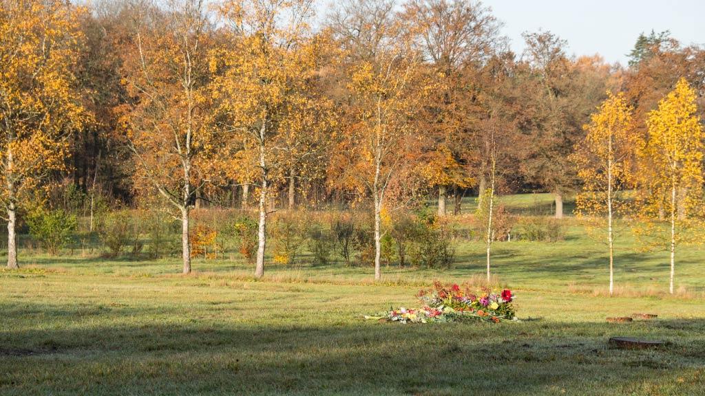 Natuurbegraafplaats Heidepol - SuAZe uitvaartverzorging Apeldoorn