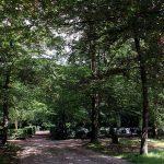 Begraafplaats Beekbergen