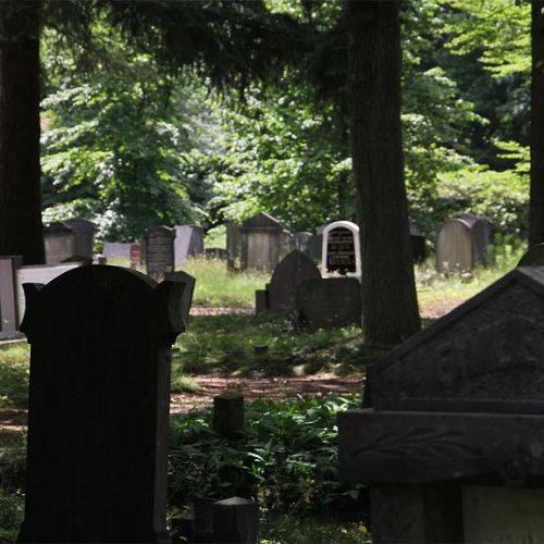 Begraafplaats Soerenseweg